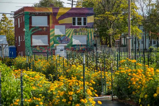 jardin-communautaire