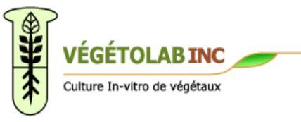 Vegetolab