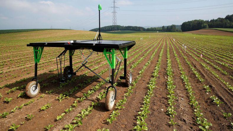 Robot agricole