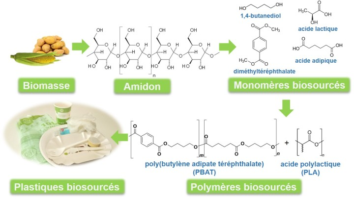 polymere_biodegradable