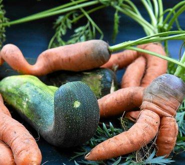 fruits-et-legumes-moches