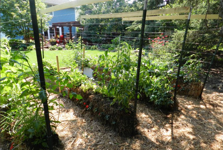 Jardin paille