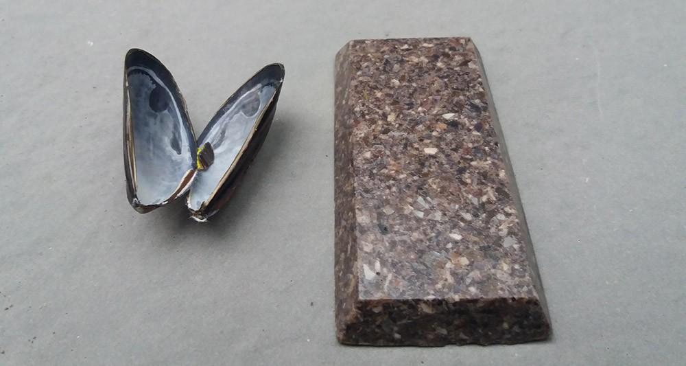 2202972_etnisi-recycle-les-coquilles-de-moules
