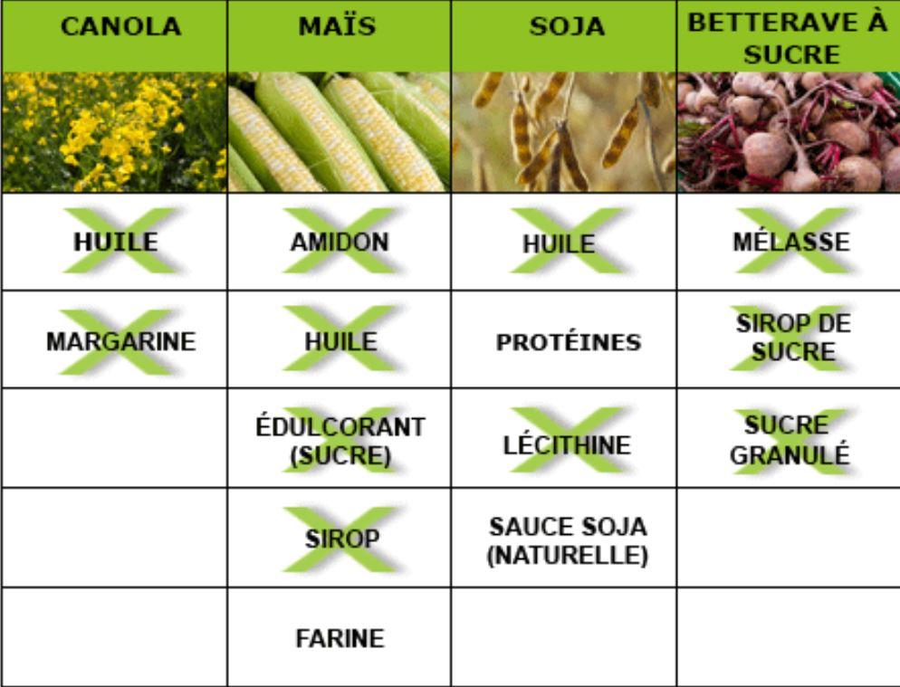 OGM 2