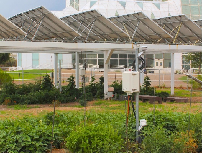 Panneaux solaires légumes