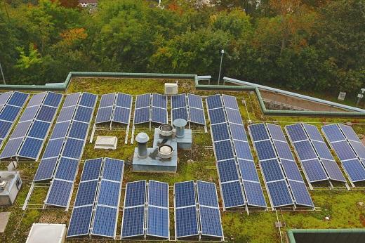 Solar panels on revegetated flat roof
