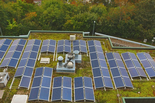 Solar panels on revegetated flat roof