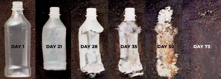 Biodegradable-hemp-plastics